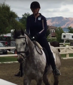 Retired Racehorse Project Showcase: Trainer Videos, Part II