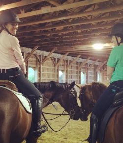 SmartPak Monday Morning Feed: #PiperPals