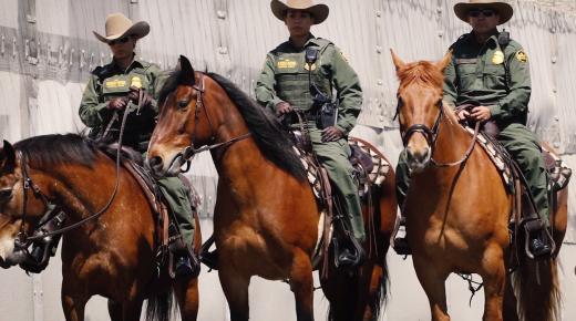 Mustangs on the Job: US Border Patrol