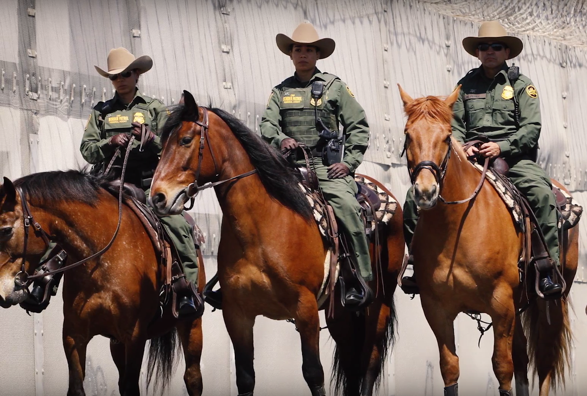 Tbt Mustangs On The Job Us Border Patrol Horse Nation