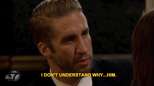 If Horse Shopping Were Like 'The Bachelorette': A Love Story in GIFs
