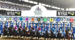 Report: 2017 Belmont Stakes