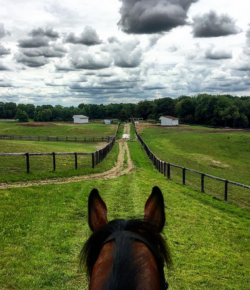 Photo Challenge: 3 Perfect Spots to Gallop