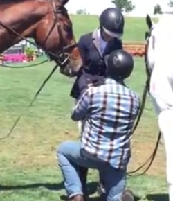 This Guy Just Set the Bar Real High for Equine Proposals