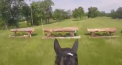World Equestrian Brands Helmet Cam: Meet Digby