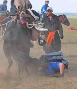 Wylie vs. the Mongol Derby: What Could Possibly Go Wrong? Part I
