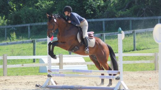 Retired Racehorse Project Showcase: Setting a Diet Plan, Part 1