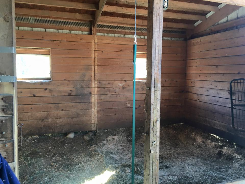The Stalls Showing How Eroded They Were Before We Started Excavation