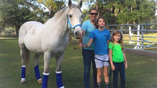 Standing Ovation by Ovation Riding: L.E.A.R.N. Horse Rescue