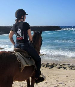 Photo Challenge: 10 Readers and Horses On the Beach