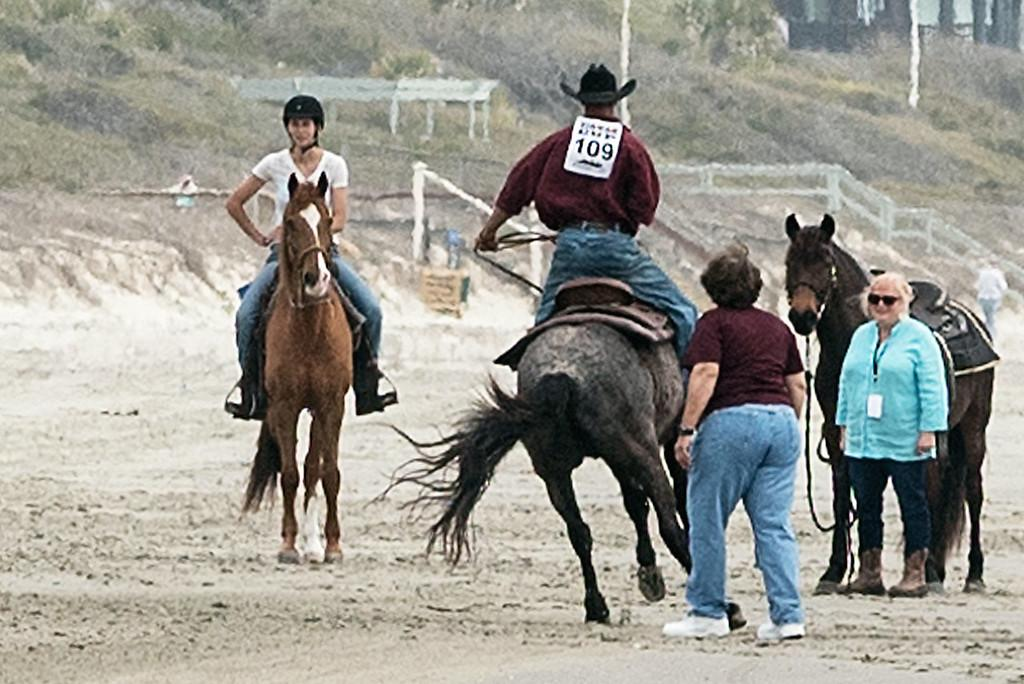 Photo challenge 10 readers and horses on the beach horse nation adam faust buckin blue vaquero the marsh tacky on kiawah island at the beach race fund raiser for kiawah cares foundation photo by jackie mcfadden sciox Choice Image