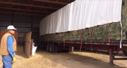 Thursday Video: THIS Is How to Unload Hay