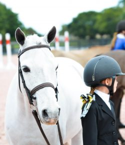 Body Shaming in the Show Ring: Enough is Enough