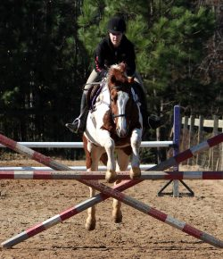 Lessons Learned: No-Stirrup Novice