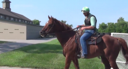 Video: Distorted Humor Goes Riding