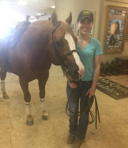 The Academic Equestrian: What I Did With My Summer Vacation