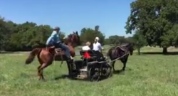 Tuesday Video: What the OTTB Is Even Happening