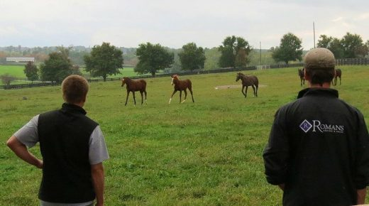 Keeneland, Colts & Cherry Wine: Billy Crouse Has Thoroughbreds in His Blood