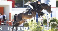 Four Horse Shows to Live Stream This Weekend