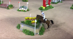 SpectraVET Performance: CPHS Arena Eventing