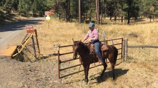 Retired Racehorse Project Showcase: Strengths, Weaknesses & Advice for Future Trainers, Part II