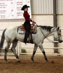 The Academic Equestrian: Strong