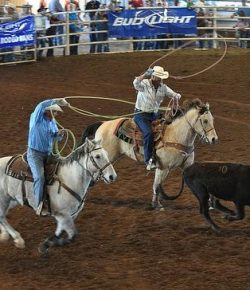 11 Truths Every Rodeo Has In Common