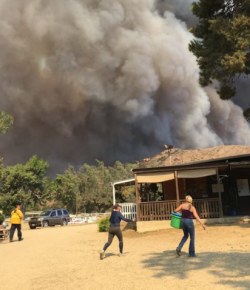 Napa and Orange County CA Fires Put Barns in Peril, Some Already Burning