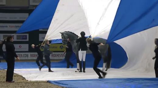 Viral Video Alert: Return of the Bomb-Proof Dressage Horse