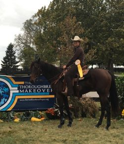 Retired Racehorse Project Spotlight