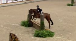 SpectraVet Perf. of the Week: Taylor St. Jacques