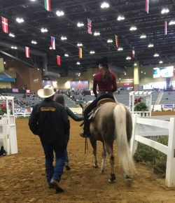 The Academic Equestrian: So Many 'Lasts'