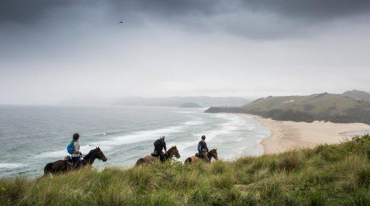 Wild Coast, Wild Ride: The Mastermind Behind Rockethorse Racing