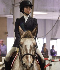 The Academic Equestrian: A Hunt Seat Re-Debut