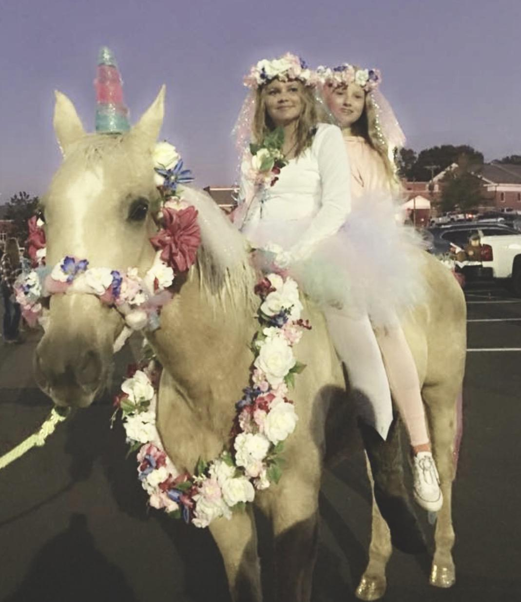 2017 Halloween Costume Contest Presented By World Equestrian Brands Honorable Mentions Horse Nation