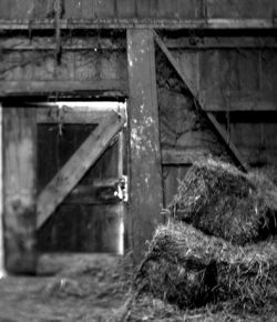 The Man in the Hay Barn
