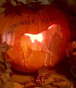 Photo Challenge: 5 Equestrian Jack-O-Lanterns