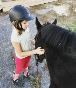 Meagan's RRP Journal: A Good Excuse For a Second Horse