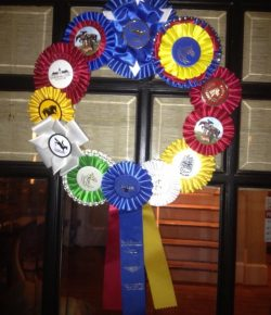 Photo Challenge: 10 Unique Ways to Display Ribbons