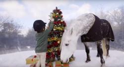 A Little Christmas Magic by Horseware