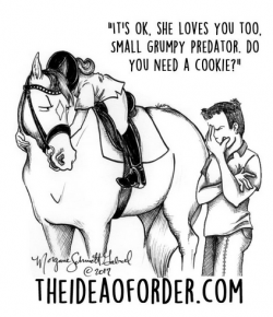 The Idea of Order: 2018 Equestrian New Year's Resolutions…