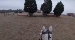 World Equestrian Brands Helmet Cam