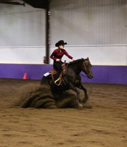 The Academic Equestrian: The 9 Cheers You Hear at a Reining
