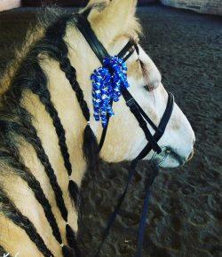 Have a Happy, Horsey Hanukkah