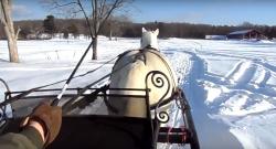 World Equestrian Brands: One Horse Open Sleigh