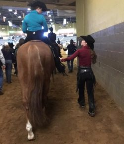 The Academic Equestrian: How to Catch-Ride Like You Know What You're Doing