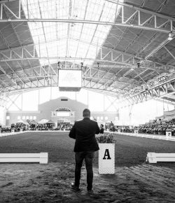 'Go Big or Go Home': Scott Hayes Is Changing West Coast Dressage