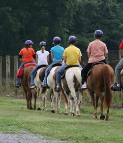 The 6 Types of Riders You Meet on the Trail