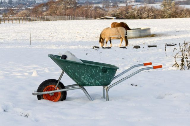 Lighthoof tips on keeping horse water from freezing
