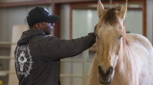 Standing Ovation by Ovation Riding: The National Ability Center